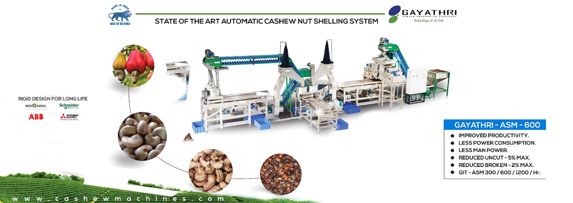 automatic cashew nut shelling machines